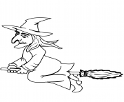 halloween witch on a broom halloween