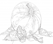 Printable pumpkin with leaves for halloween coloring pages