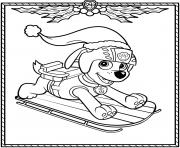 Printable Paw Patrol Holiday Christmas Zuma coloring pages