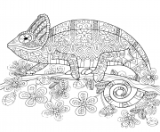 Printable chameleon mandala coloring pages