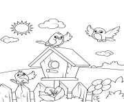 birds near a birdhouse