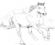 Printable horse mustang mare coloring pages