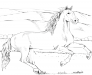 Printable andalusian horse coloring pages