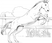 Printable horse anglo arabian coloring pages