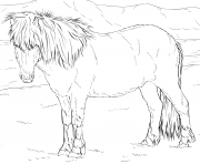 Printable icelandic horse coloring pages