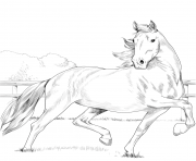 Printable hackney horse coloring pages