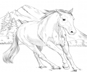 Printable horse american paint coloring pages