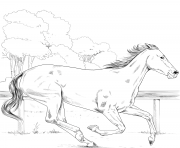 Printable horse thoroughbred coloring pages