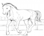 Printable horse westphalian coloring pages