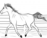 Printable arab horse coloring pages