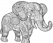 elephant for adult animals