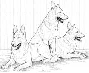 Printable german shepherddog coloring pages