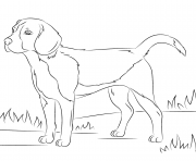 Printable realistic dog coloring pages