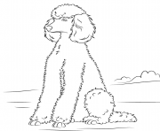 Printable poodles dog coloring pages