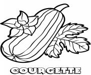 vegetable courgette