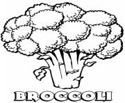 vegetable broccoli