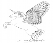 Ornate Winged Unicorn Flowers Coloring Pages Printable