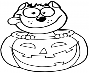 Printable black cat sitting inside of a pumpkin coloring pages