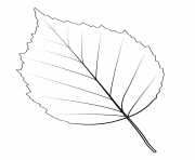 Printable paper birch leaf coloring pages