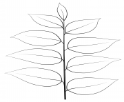 Printable kentucky coffee leaf coloring pages