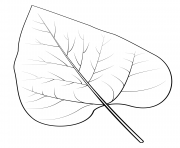 Printable nothern catalpa leaf coloring pages