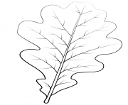 Printable english oak leaf coloring pages